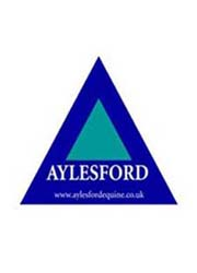 Aylesford Equine